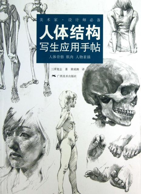 头骨素描绘图步骤图片