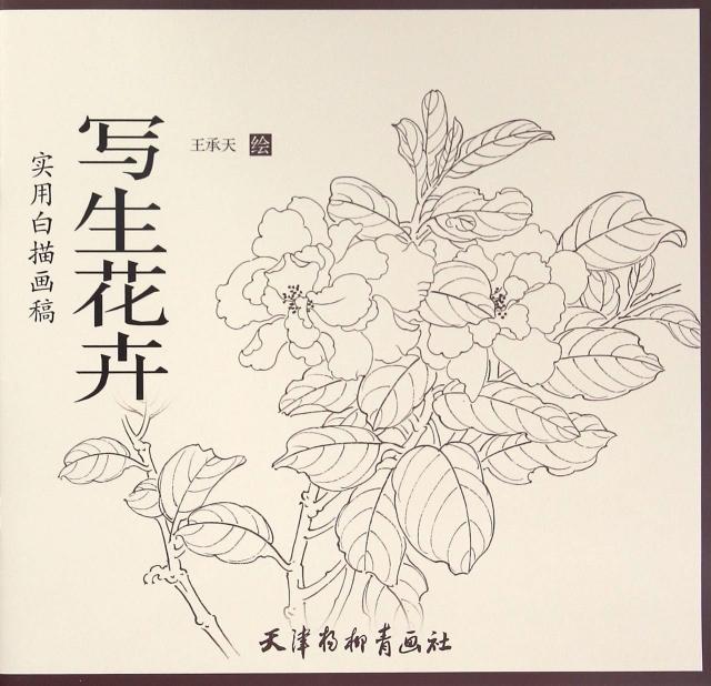 《写生花卉(实用白描画稿)》作者王承天擅长工笔花鸟画,经常到
