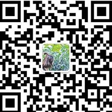 489563590989010313.jpg