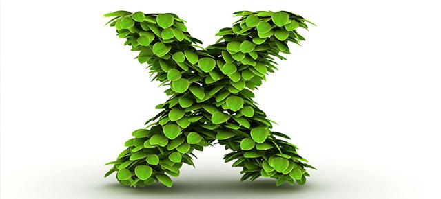 X:一个充满无限变化的答案