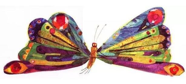 世界上独一无二的美丽蝴蝶