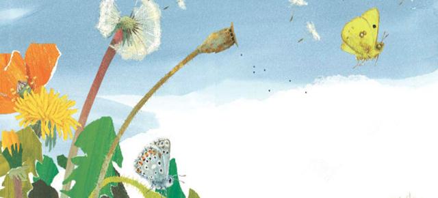 晚安故事第48期:《一粒种子的旅行》