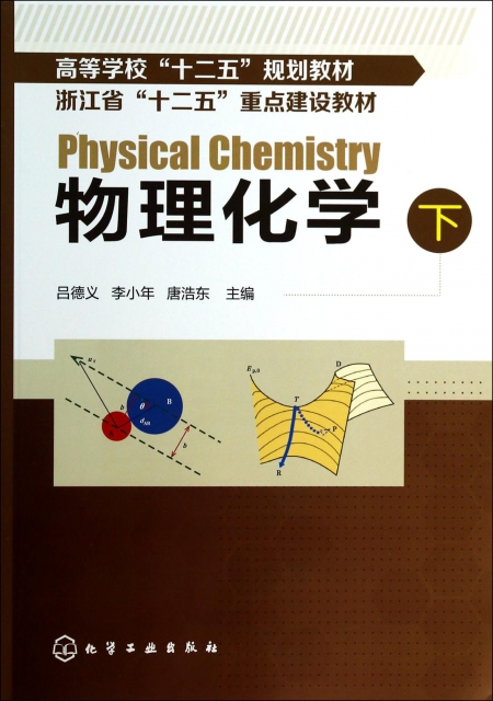物理化學(下高等學校十二五規劃教材)