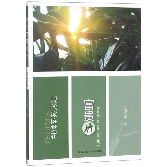 現代家庭賞花(富貴竹)