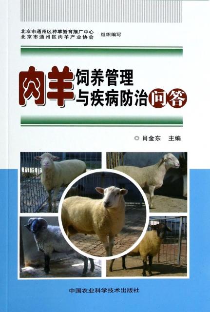 肉羊飼養管理與疾病防治問答