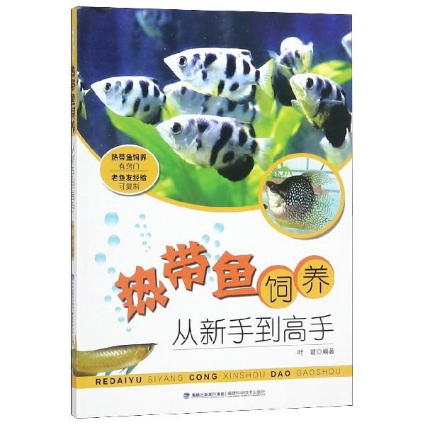 熱帶魚飼養(從新手到