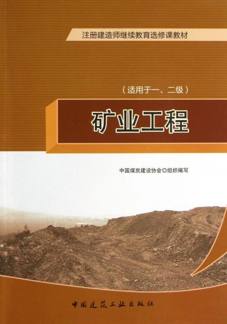 礦業工程(適用於12級注冊建造師繼續教育選修課教材)