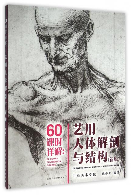 60課時詳解--藝用人體解剖與結構(新版)