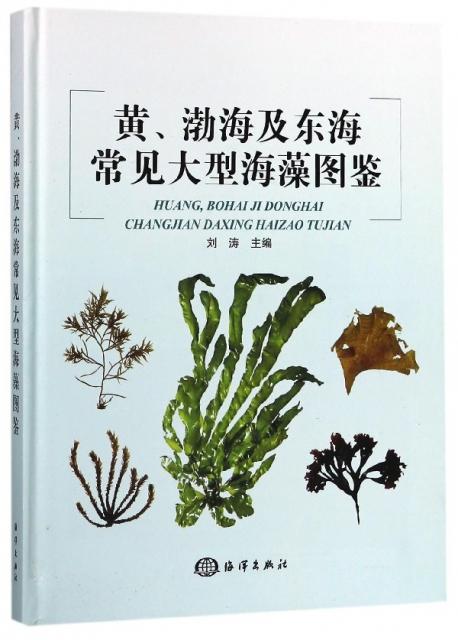 黃渤海及東海常見大型海藻圖鋻(精)