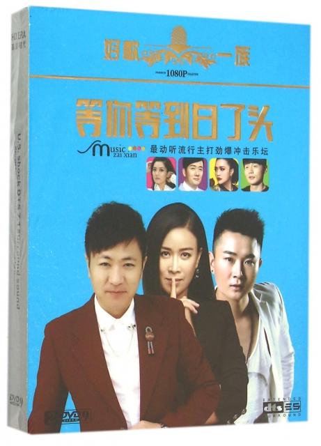DVD-9等你等到白了頭(2碟裝)