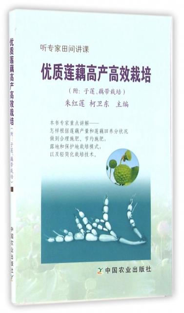 優質蓮藕高產高效栽培