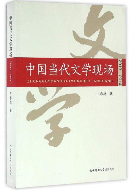 中國當代文學現場(2
