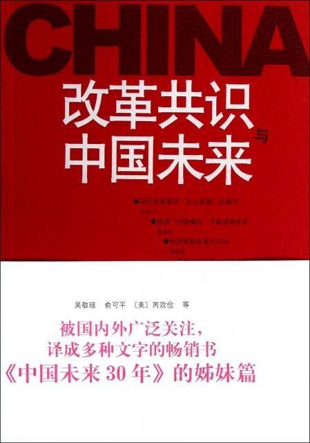 改革共識與中國未來