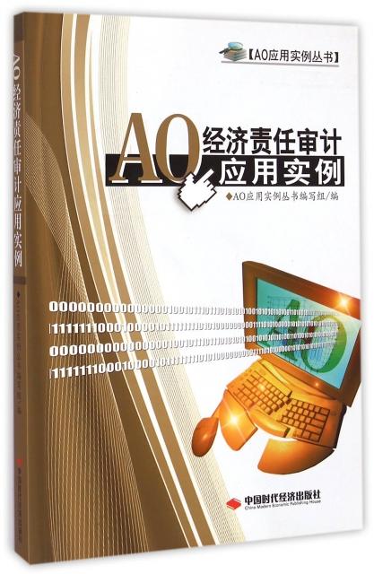AO經濟責任審計應用