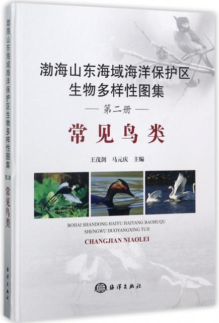 渤海山東海域海洋保護區生物多樣性圖集(第2冊常見鳥類)(精)