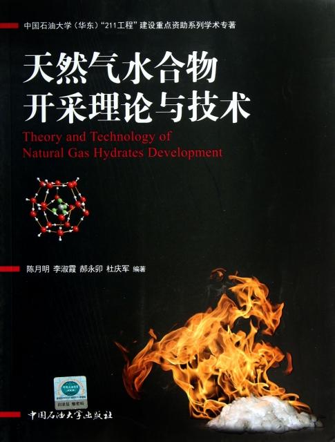 天然氣水合物開采理論與技術