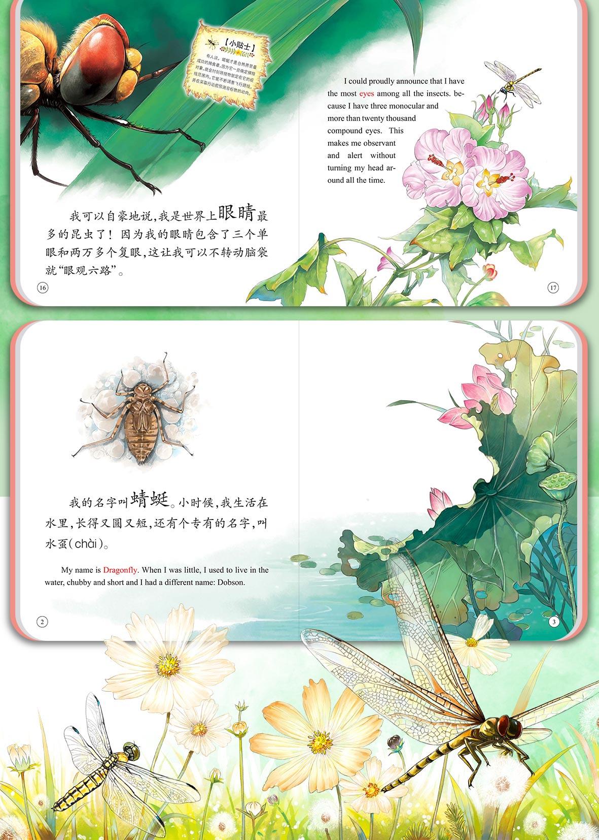 昆虫详情_15.jpg