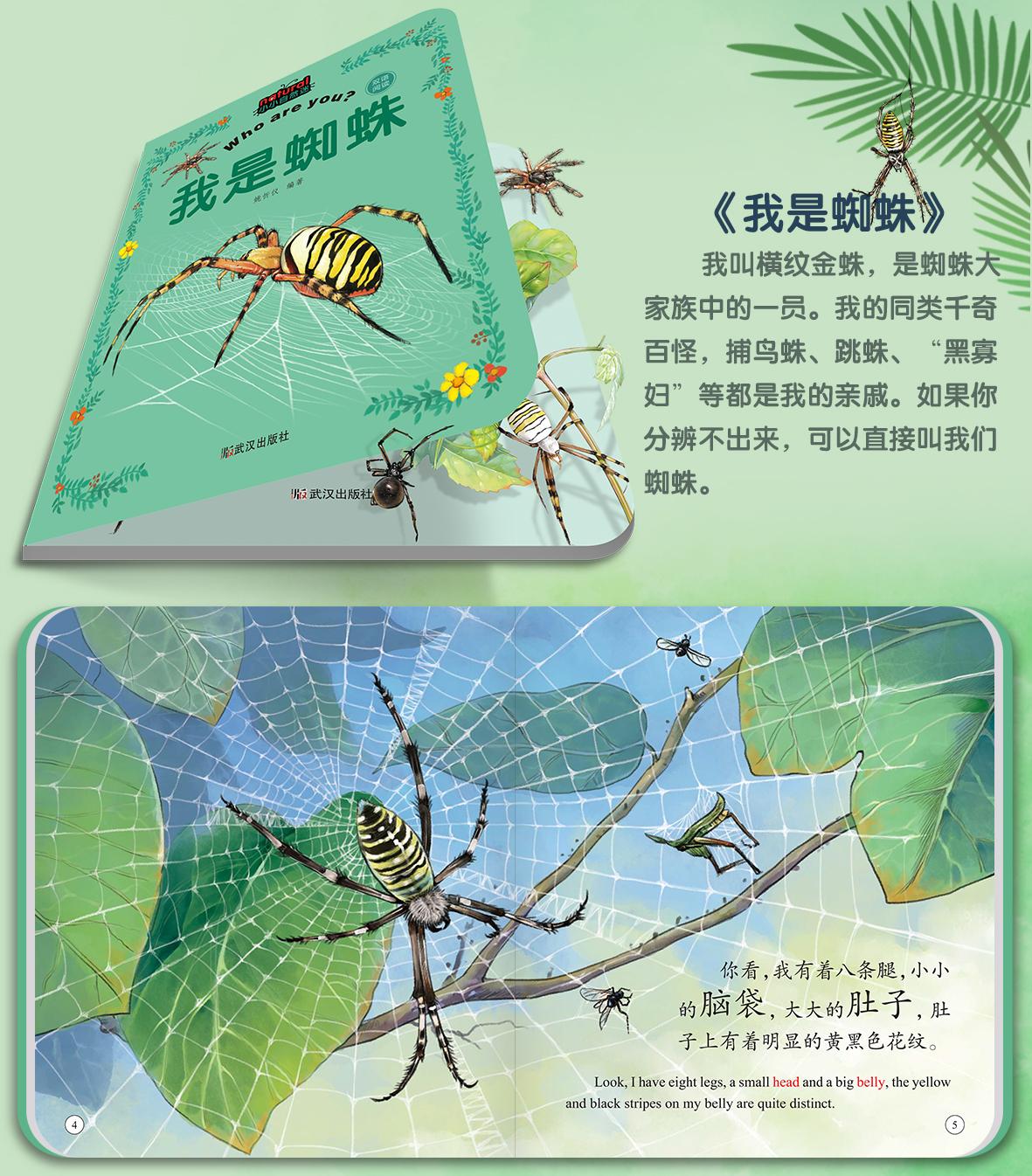 昆虫详情_11.jpg