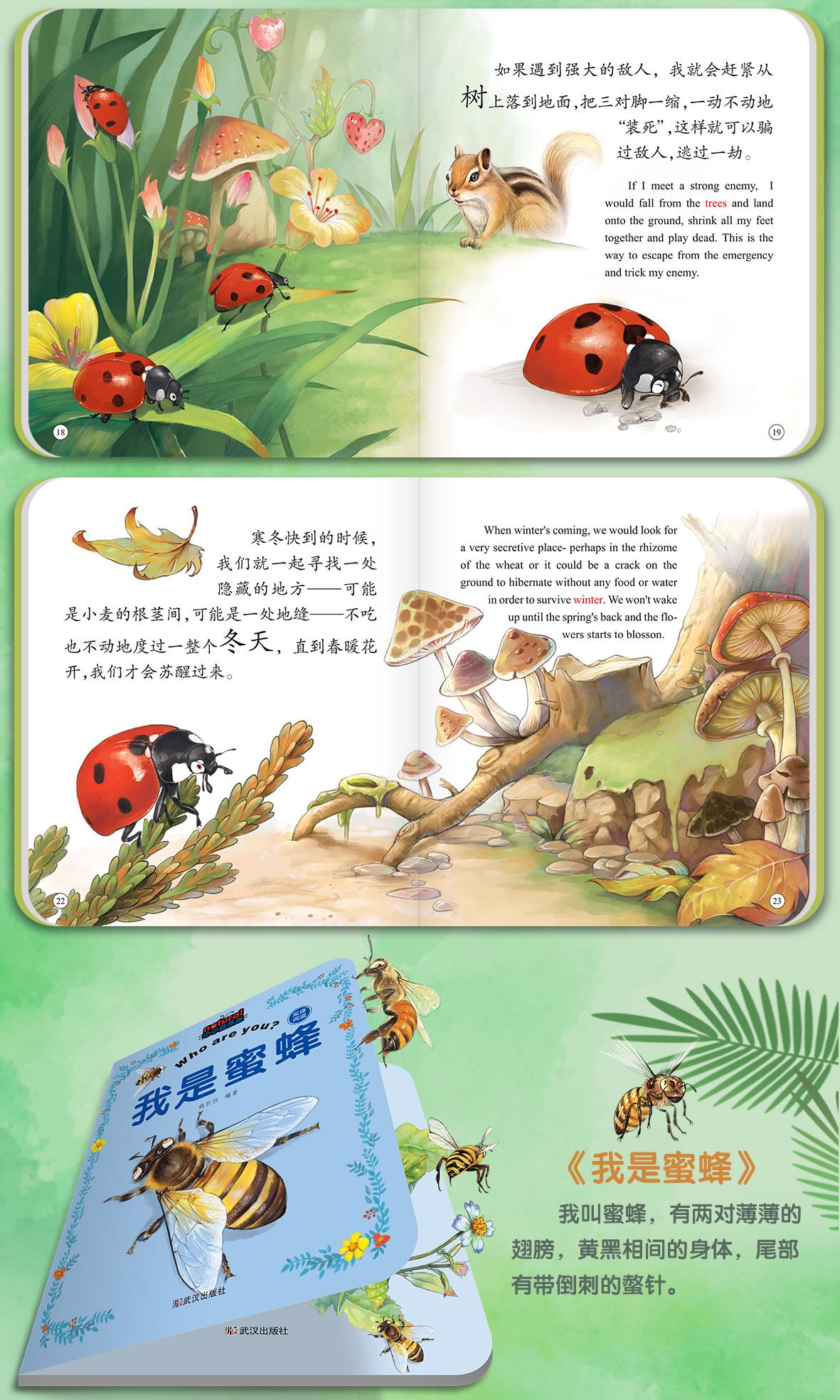 昆虫详情_07.jpg