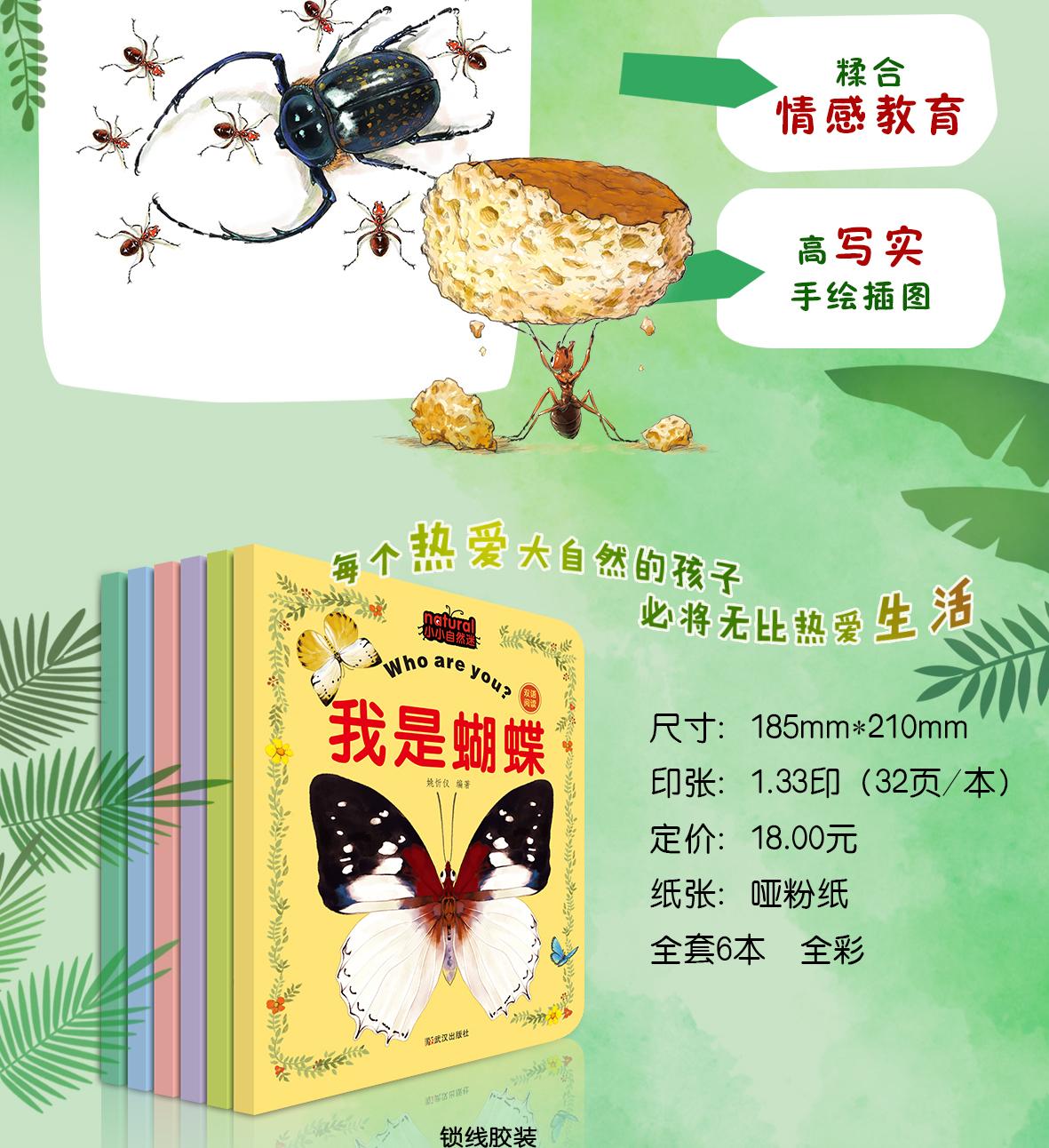 昆虫详情_03.jpg